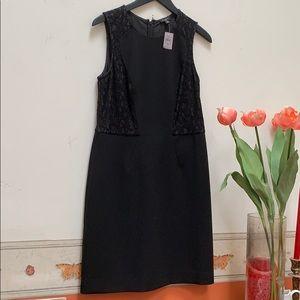 Ann Taylor Black shift sleeveless Lace dress 8P